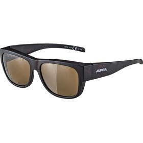 Alpina Overview II P Cykelbriller, havana matt/brown mirror
